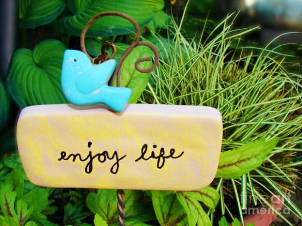 enjoy-life-laura-brightwood